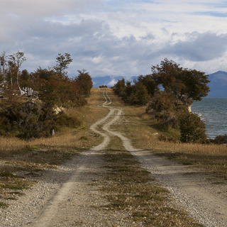 Tierra del Fuego - Where a dog chased me for few minutes